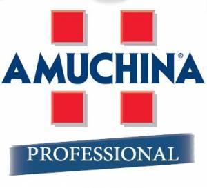 Amuchina Professional